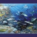 Haie der Welt-Panorama • Kunstdruck auf Papier