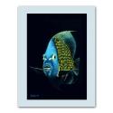 Kunstdruck auf Papier: Kaiserfisch