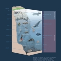 Tiefsee Meereszonen Wissenstafel • Druck auf Leinwand