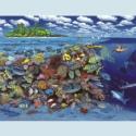 Korallenriff-Panorama • Kunstdruck auf Papier