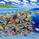Korallenriff-Panorama • Druck auf Leinwand