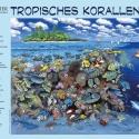 Korallenriff-Panorama • Kunstdruck auf Papier - mit Legende/Tiernamen