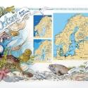 Ostsee Wissenstafel • Druck auf Leinwand