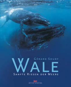 41798-BU-Wale