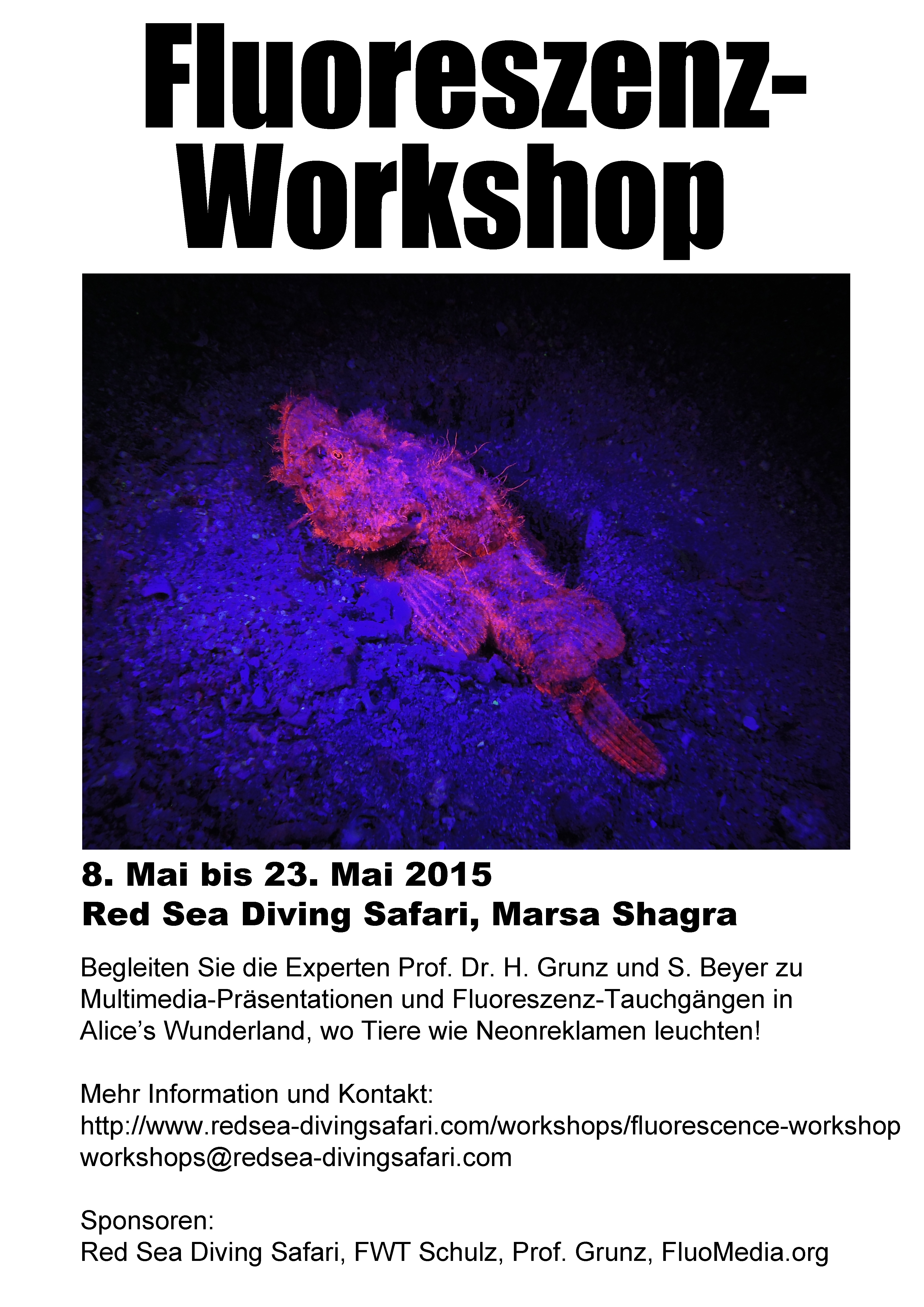 Workshop3508x4961(DINA3)
