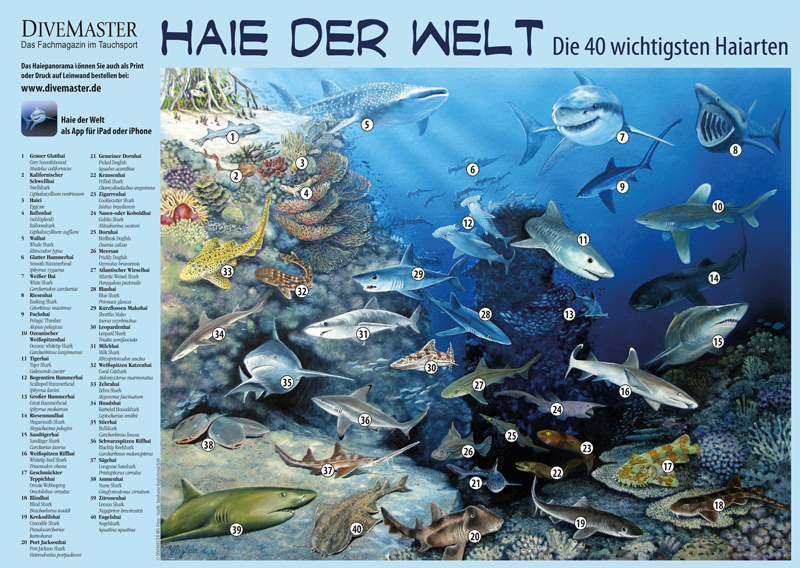 Klappseite-DM85-Haie-der-Welt