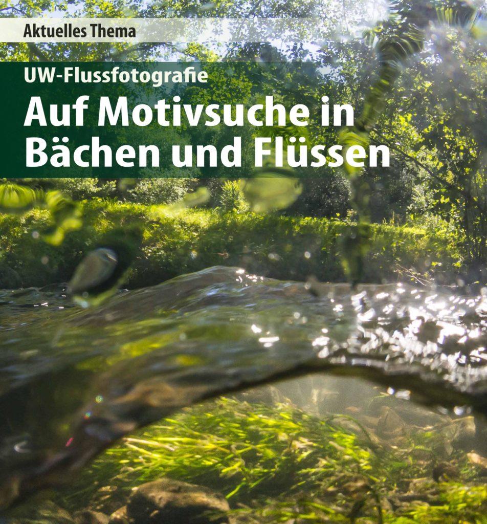 Motivsuche in Tümpel, Bach und Weiher