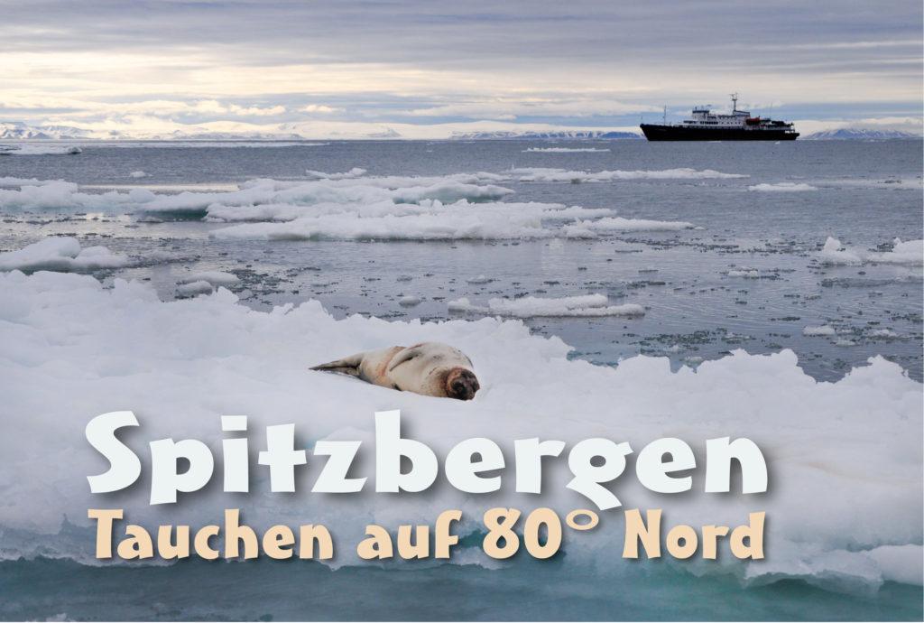 Spitzbergen - Tauchen auf 80 Grad Nord
