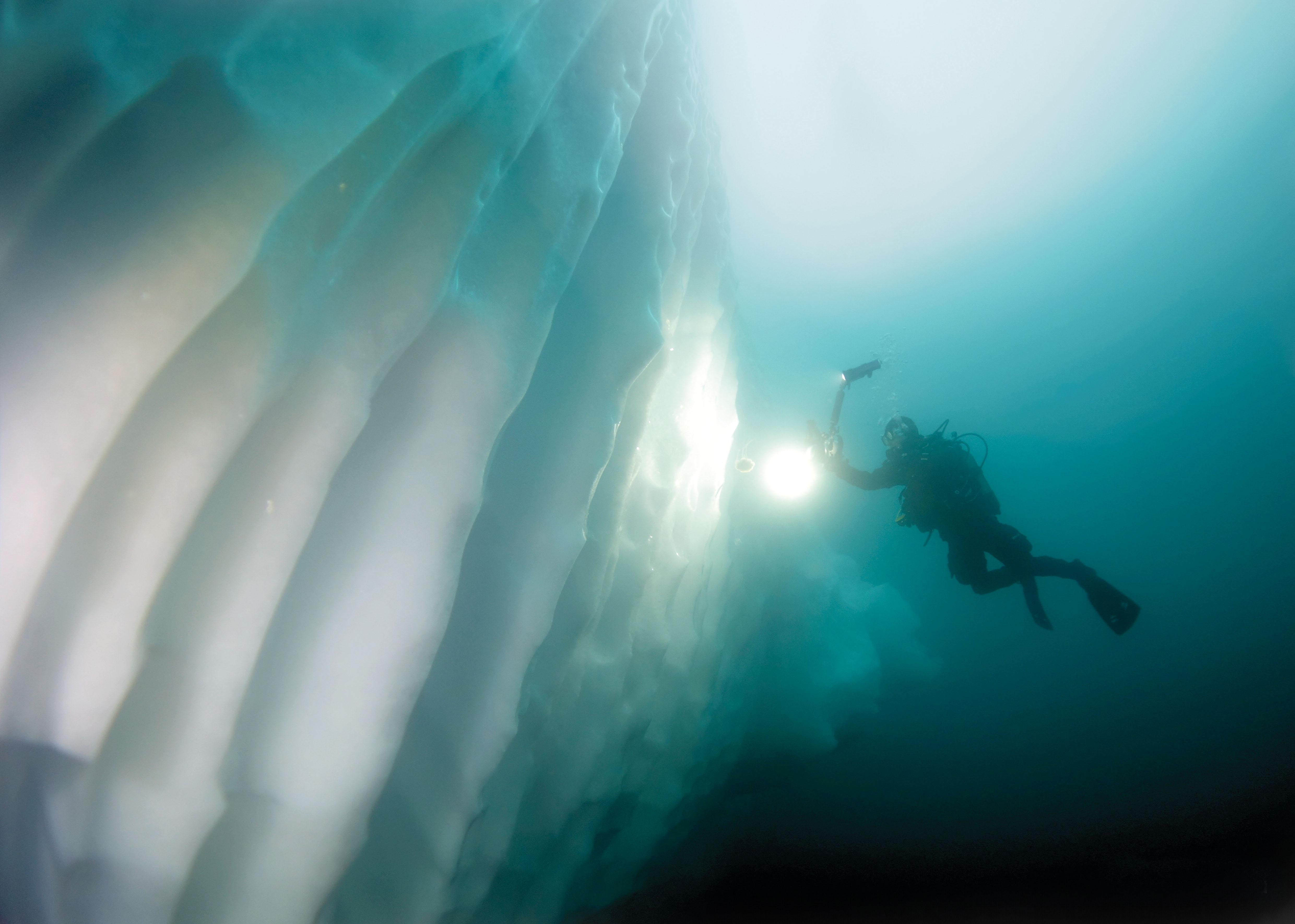 Grönland - Tauchen im Land der Eisberge