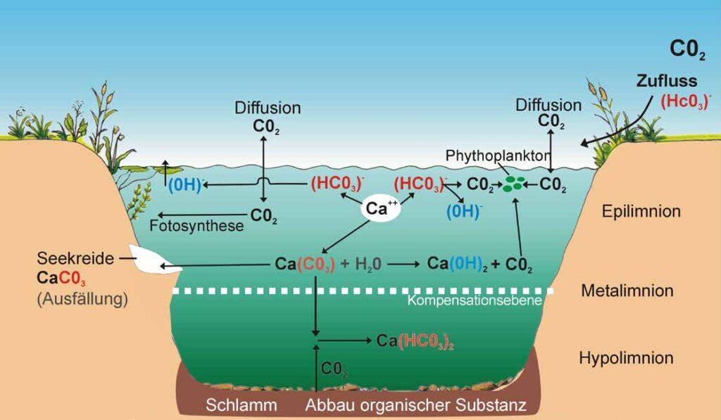 Süsswasser - Erstaunliches und Wissenswertes